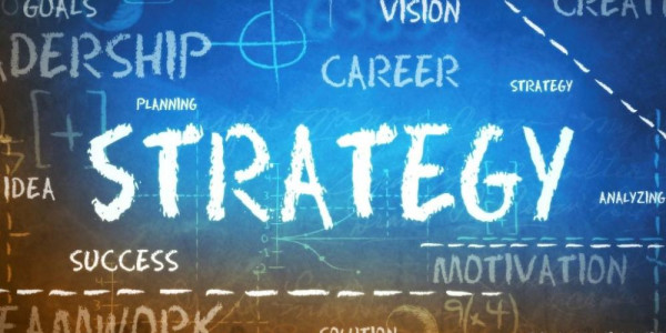Strategic planning of human resources and the preparation and development of competencies